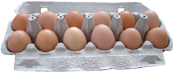 Carton of micro farmed fresh eggs